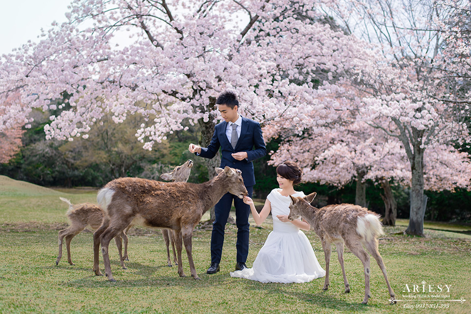 海外自助婚紗,京都婚紗包套,新娘秘書,攝影師大青蛙, 京都和服